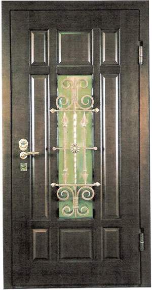входная железная дверь в царицыно